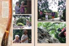Tree-of-Life-Ava-Weis-Buch-Digital_Seite_10
