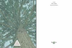 Tree-of-Life-Ava-Weis-Buch-Digital_Seite_03